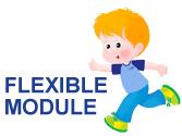 Flexible Module